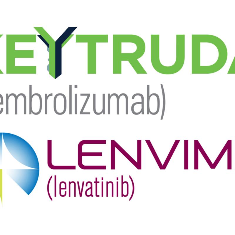 «Китруда» (Keytruda, пембролизумаб) и «Ленвима» (Lenvima, ленватиниб).