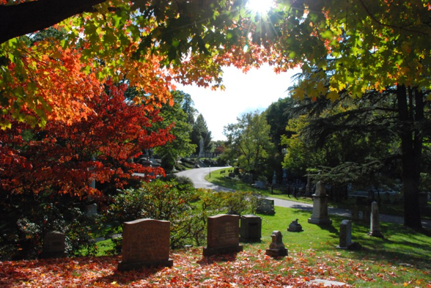 source: http://www.thebostoncalendar.com/system/events/photos/000/001/740/original/mount-auburn-cemetery.jpg?1375227039