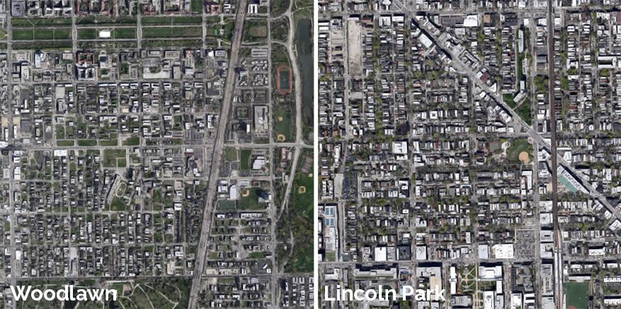 woodlawn vs lincoln park street trees