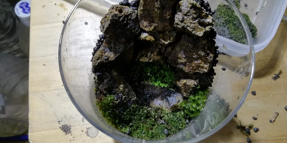 コップの真ん中は滝壺のイメージ