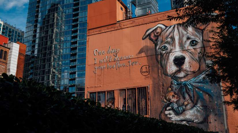public mural with a dog