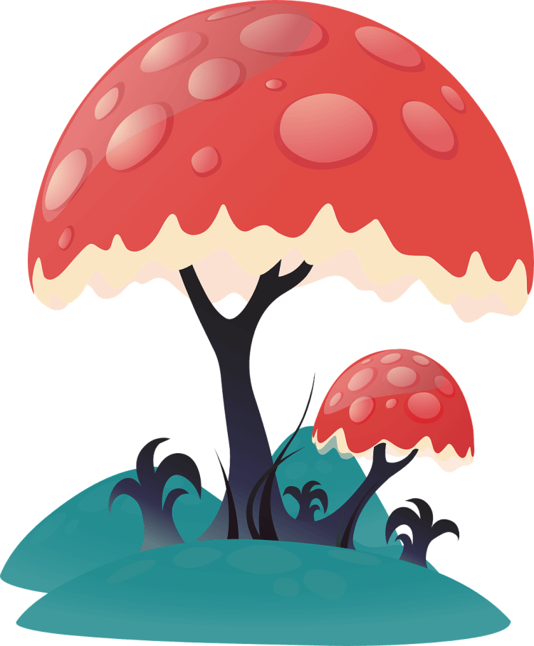 illustration of a mushroom
