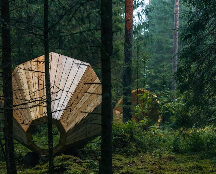 Nature's Megaphones