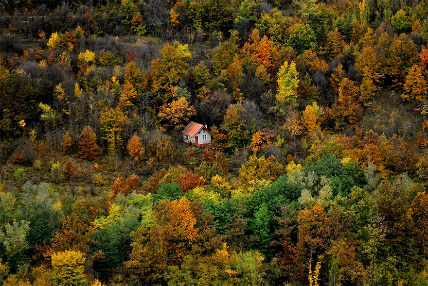 cozy-cabins-in-the-woods-38-575fcff04f2c9__880