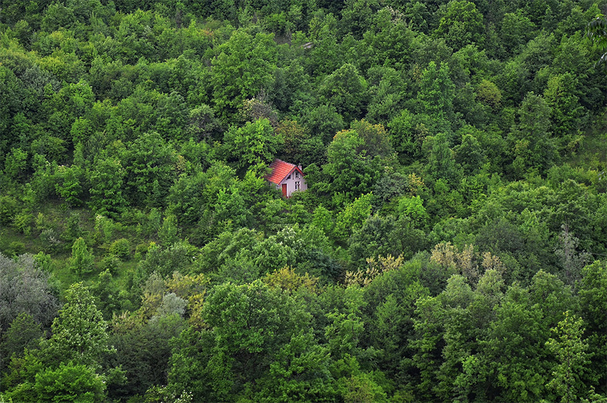 cozy-cabins-in-the-woods-42-575fd14baee42__880