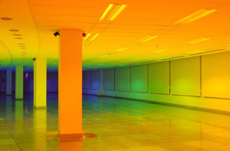 living-inside-a-rainbow-5-moss-and-fog