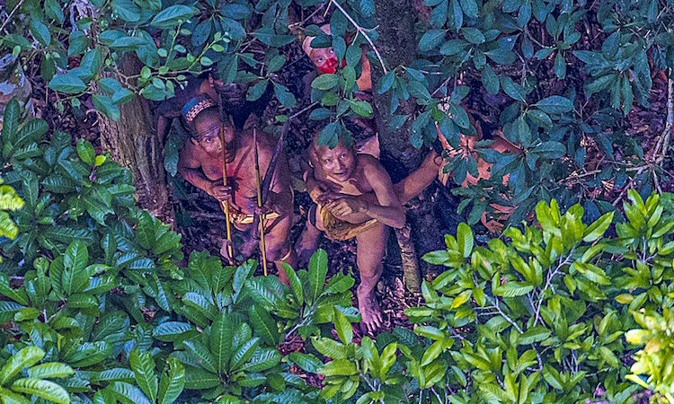 ricardo-stuckert-undiscovered-amazon-tribe-brazil-1