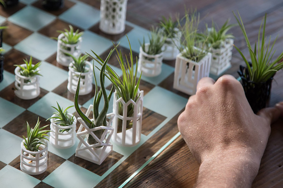 3D Printed Air Plant Chess Board