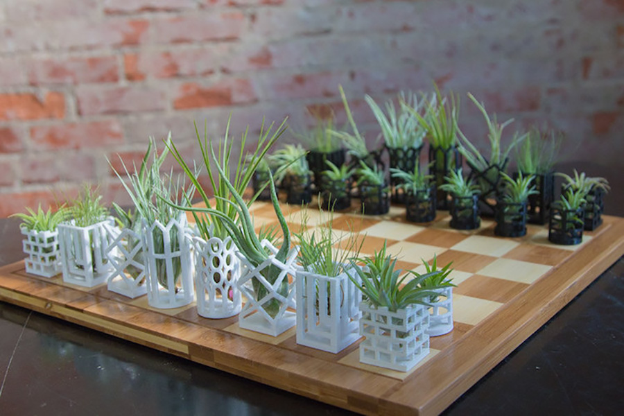 chess-planters-moss and fog 5
