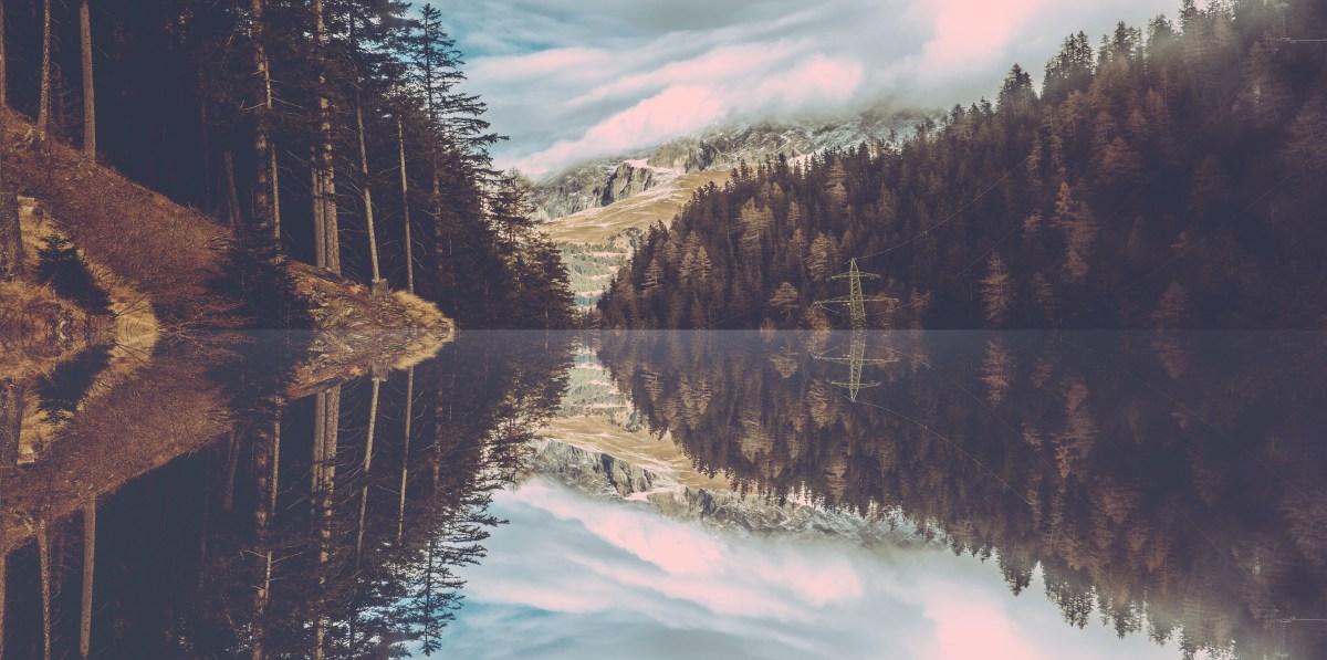 Switzerland Horizon Moss and Fog 5