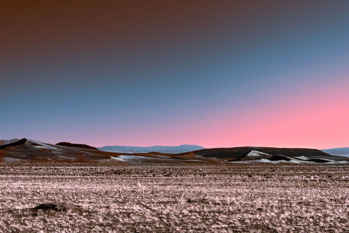 Neon Desert Moss and Fog 6
