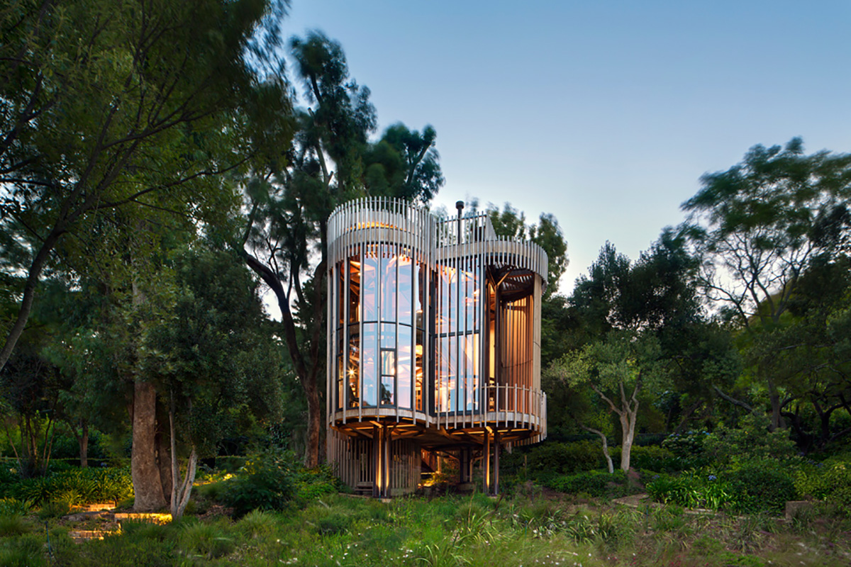 cape-town-tree-house-moss and fog cover