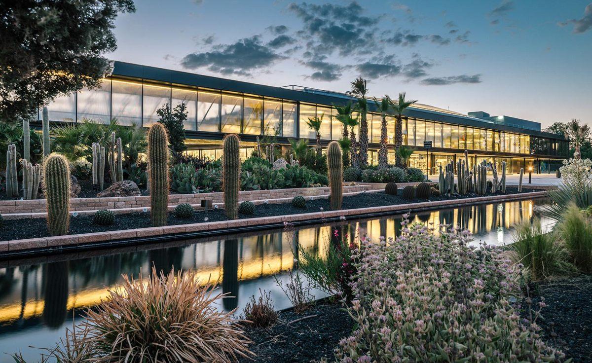 Europe's Largest Cactus Garden