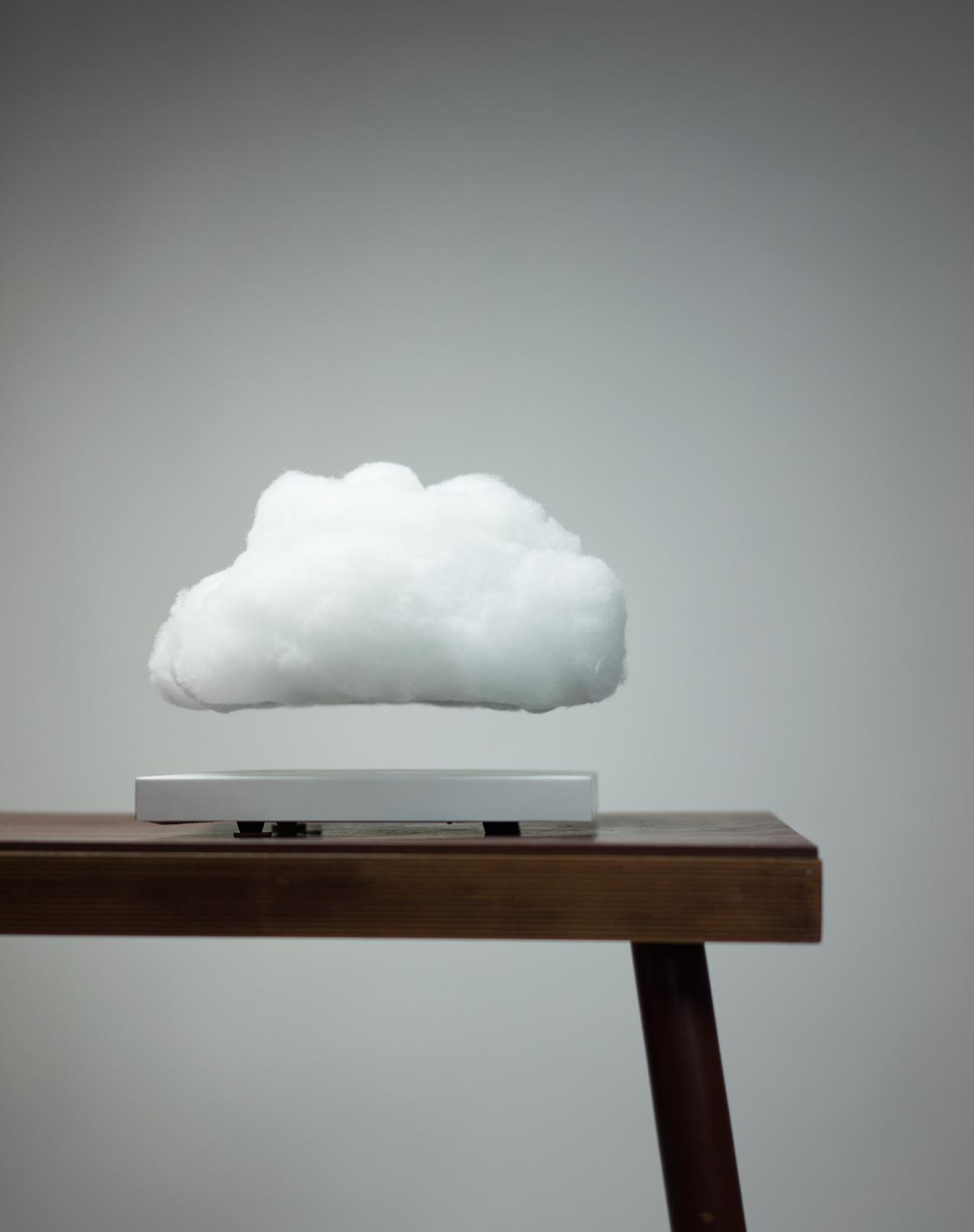 floating cloud moss and fog 4