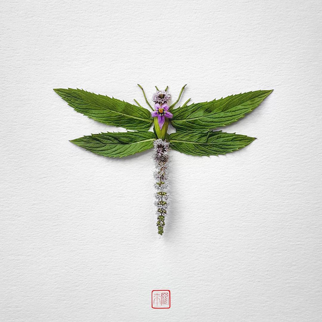 carefully arranged insects made of flowers and leaves