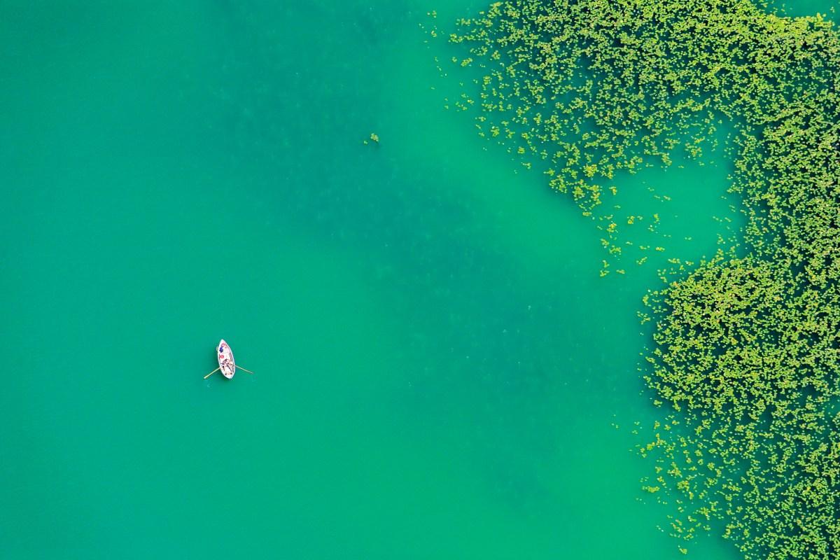 Luftaufnahme von einem Ruderboot auf dem Pilsensee neben Seerosen