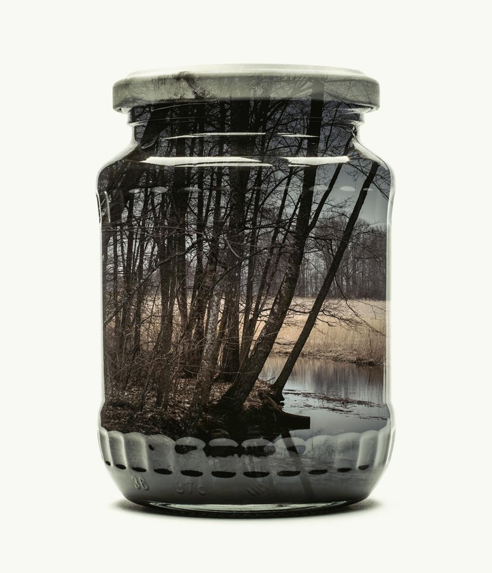 ChristopherRelander-moss-and-fog-3