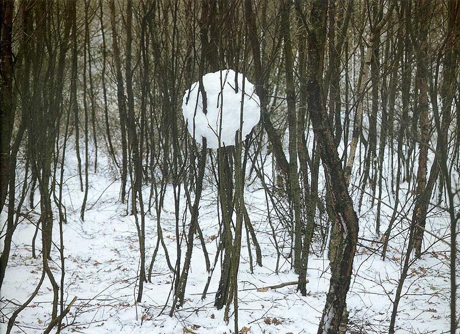 goldsworthy-winter-moss-and-fog-10