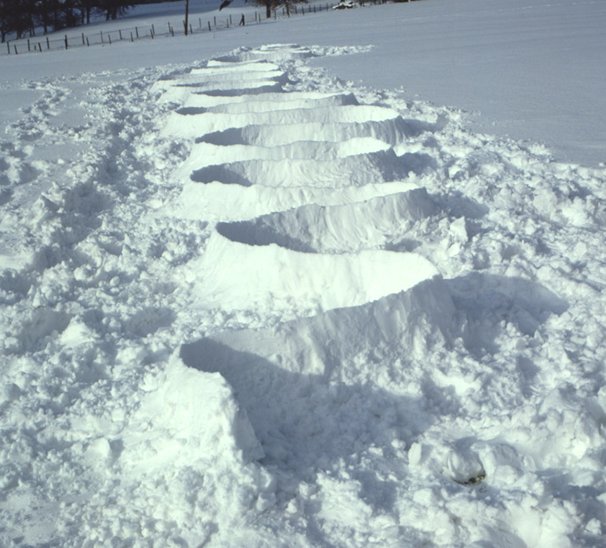 Andy Goldsworthy winter art