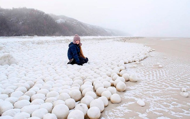 Siberian snowballs