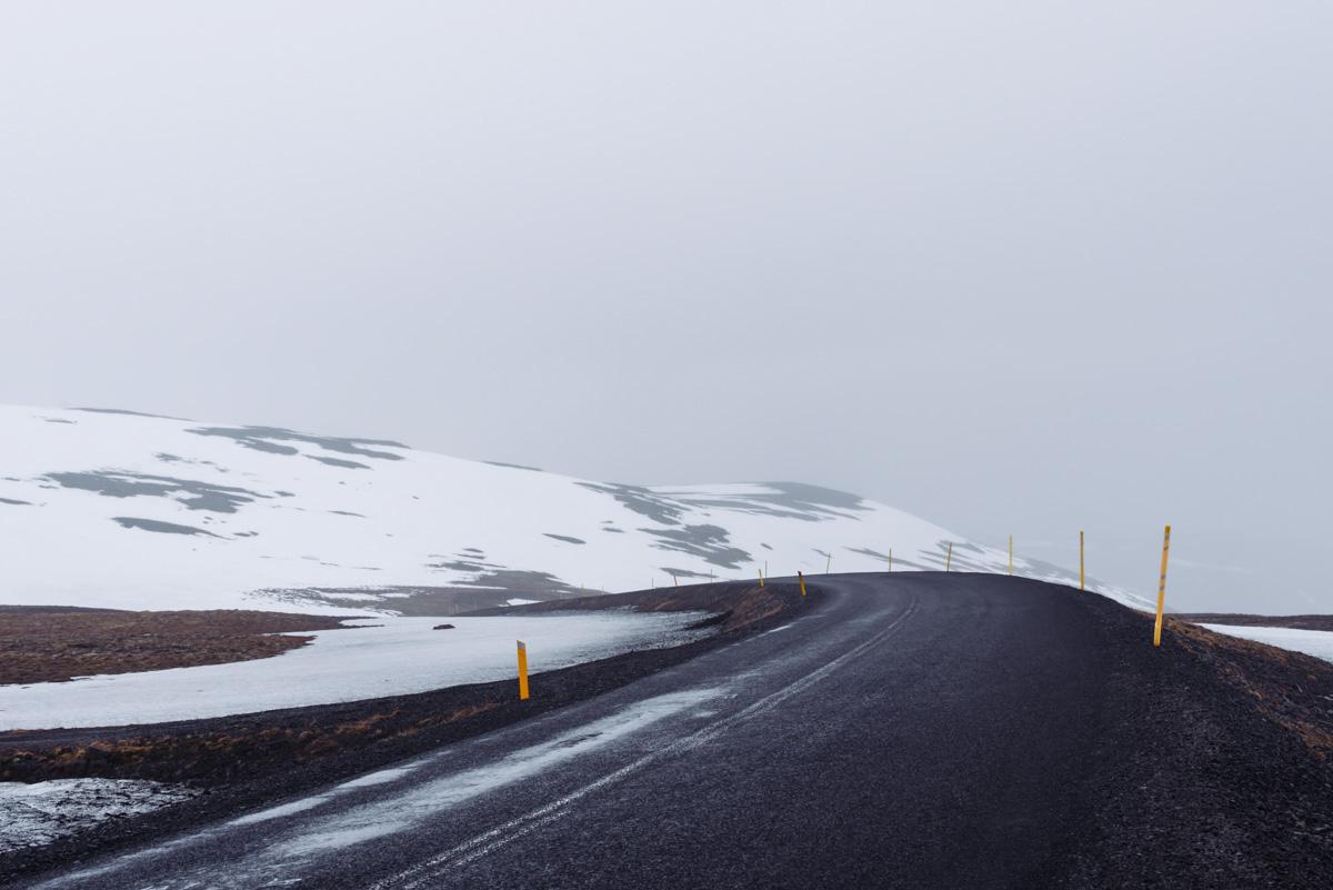 westfjords-iceland-moss-and-fog-9