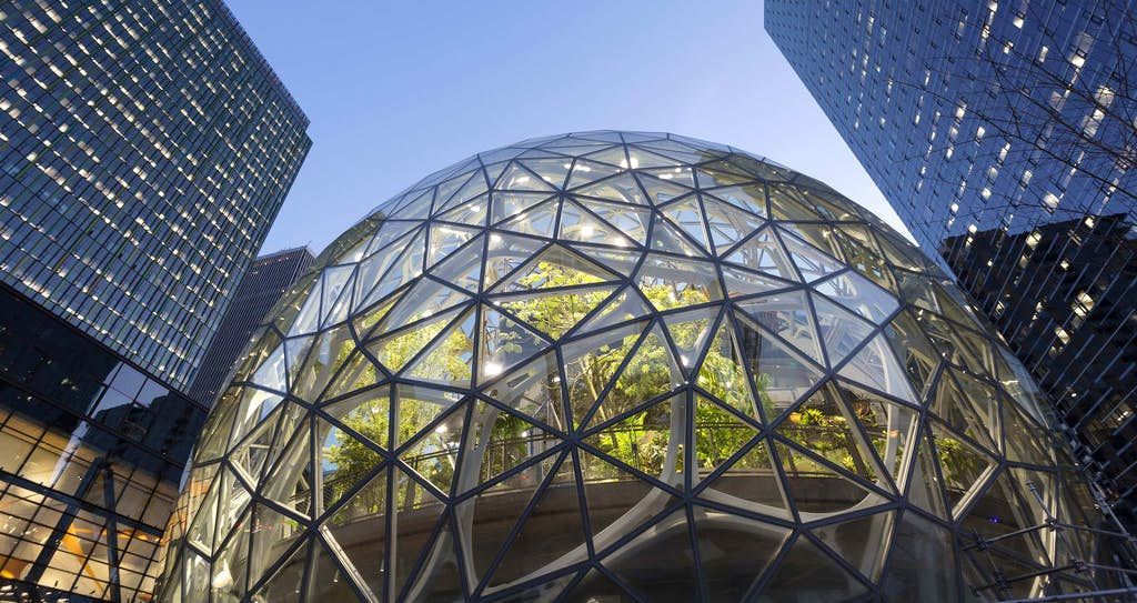 amazon-spheres-moss-and-fog-1.8