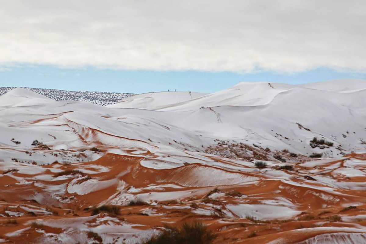 It Just Snowed in the Sahara