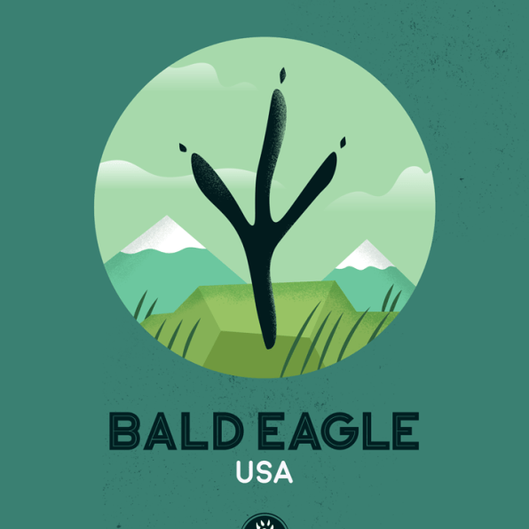 WildSideSeries__07_Eagle