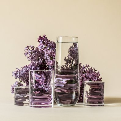 Suzanne.Saroff.Lilac