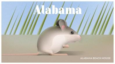 Endangered Animals Moss and Fog Alabama