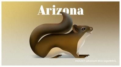 Endangered Animals Moss and Fog Arizona