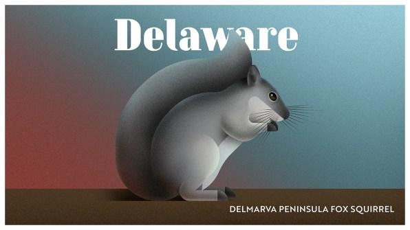 Endangered Animals Moss and Fog Delaware
