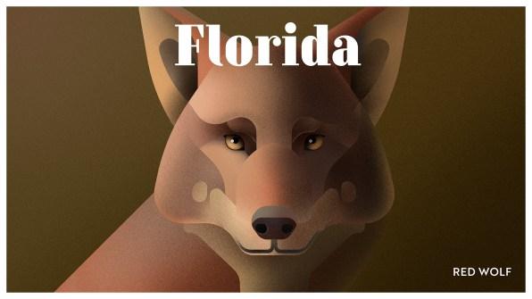 Endangered Animals Moss and Fog Florida