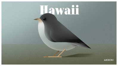 Endangered Animals Moss and Fog Hawaii