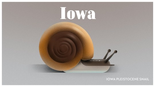 Endangered Animals Moss and Fog Iowa