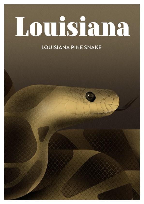 Endangered Animals Moss and Fog Louisiana