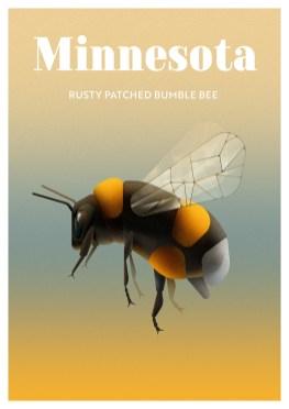 Endangered Animals Moss and Fog Minnesota