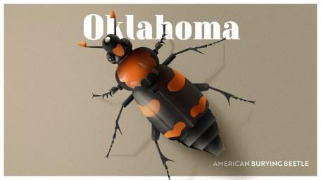 Endangered Animals Moss and Fog Oklahoma