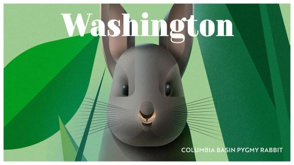 Endangered Animals Moss and Fog Washington