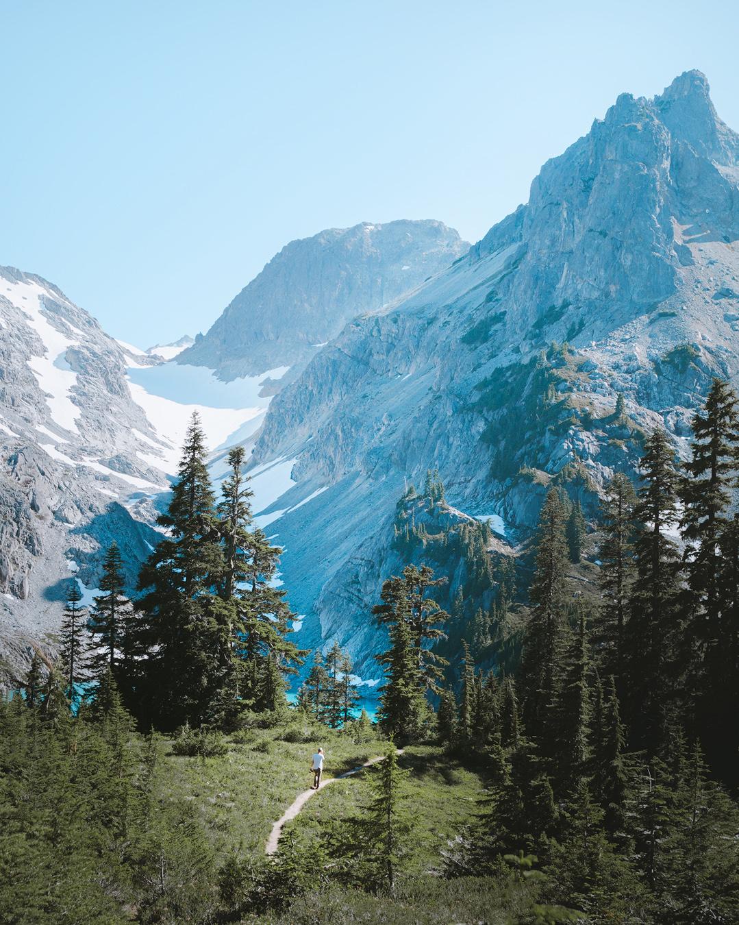 alpine-moss-and-fog-5