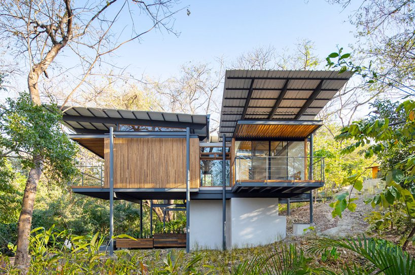 jungle-frame-house-moss-and-fog10