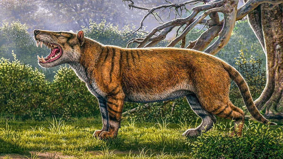 This Newly Discovered Ancient Carnivore Was Giant and Ferocious