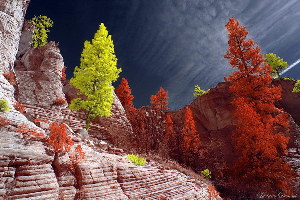 infrared-photo-demasi-7