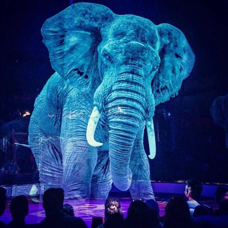 hologram-circus-animals-roncalli-3