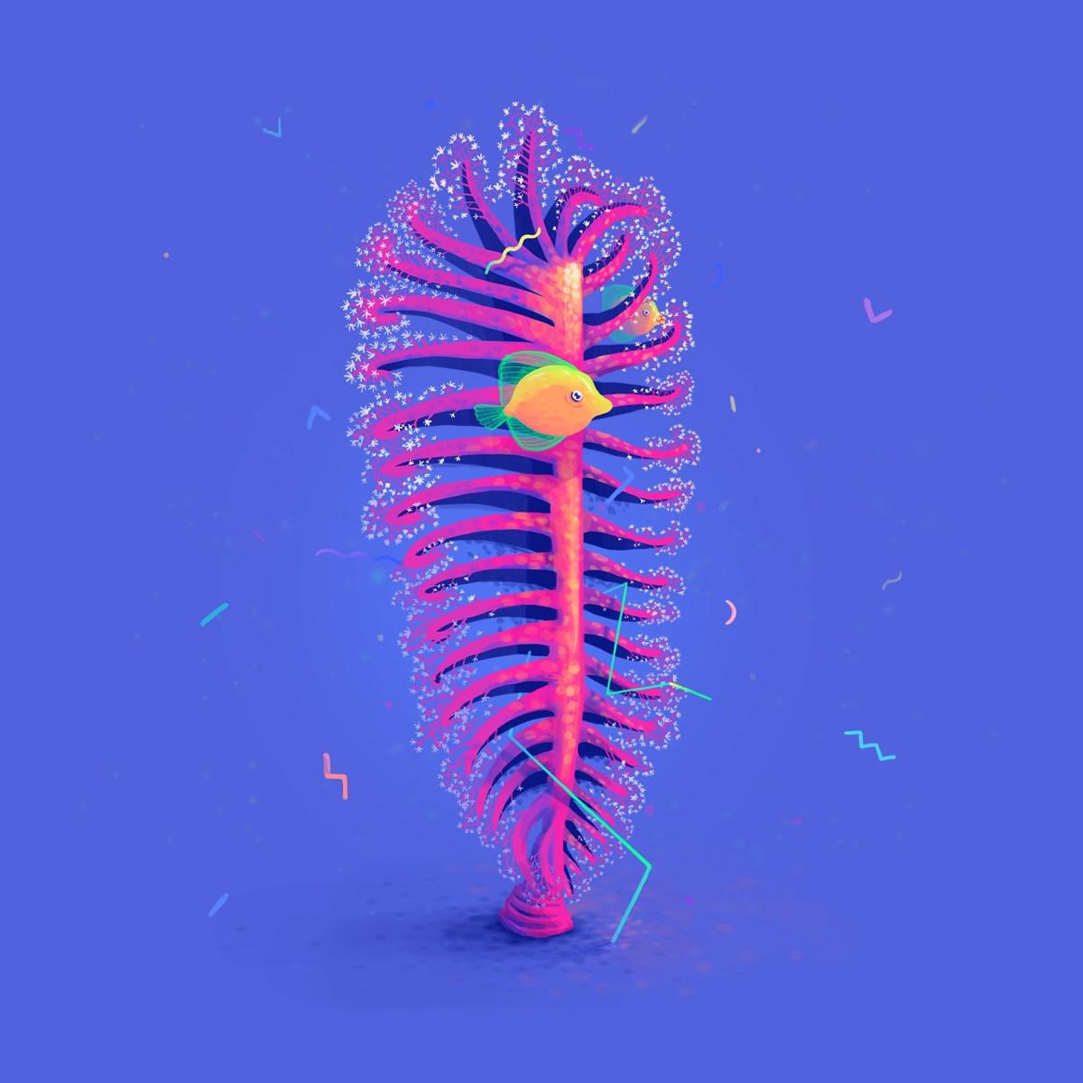 coral-i