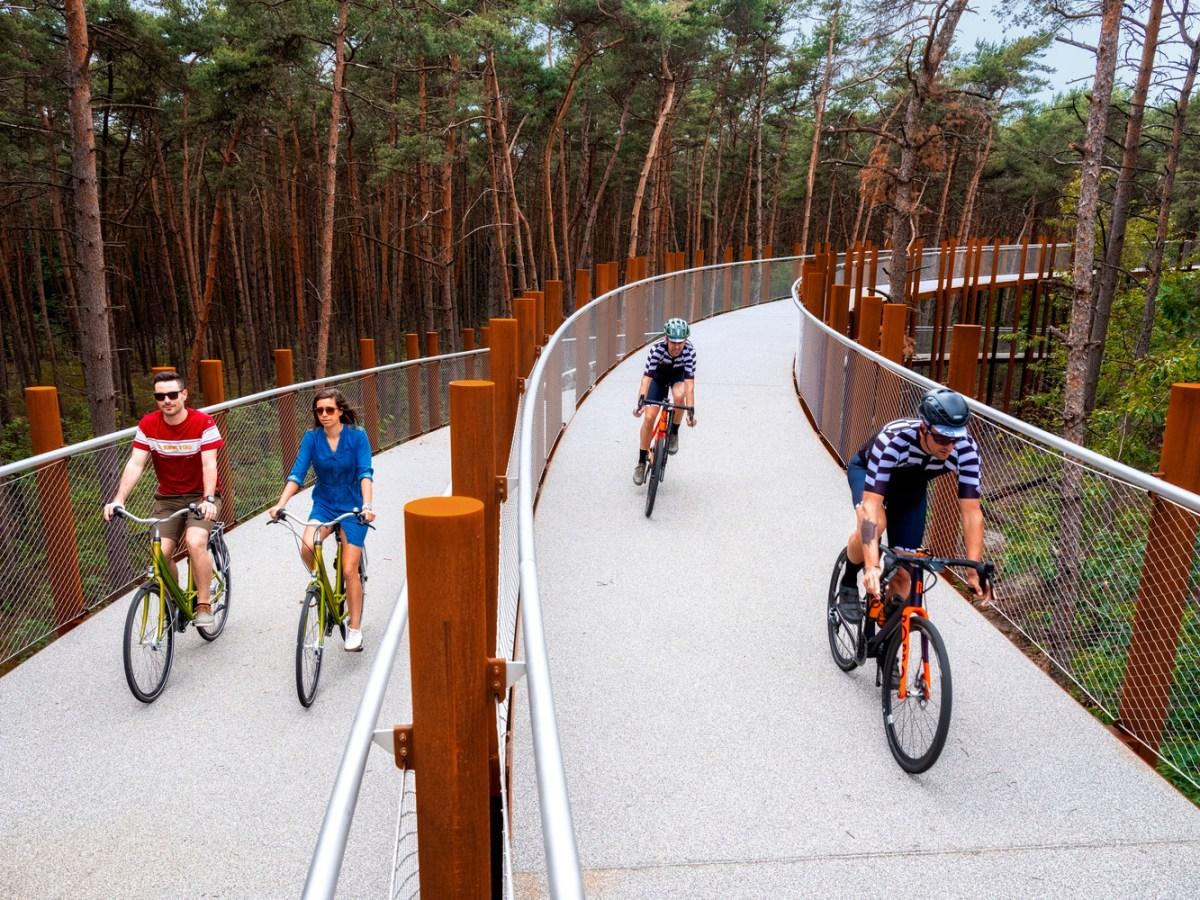 bike-path-4