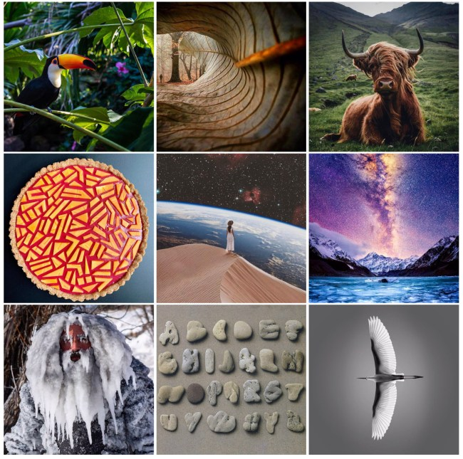 top nine instagram posts of 2019