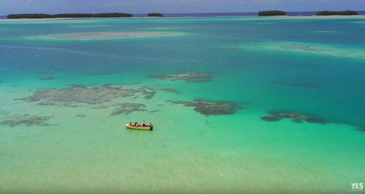 Tuvalu-moss-and-fog-5