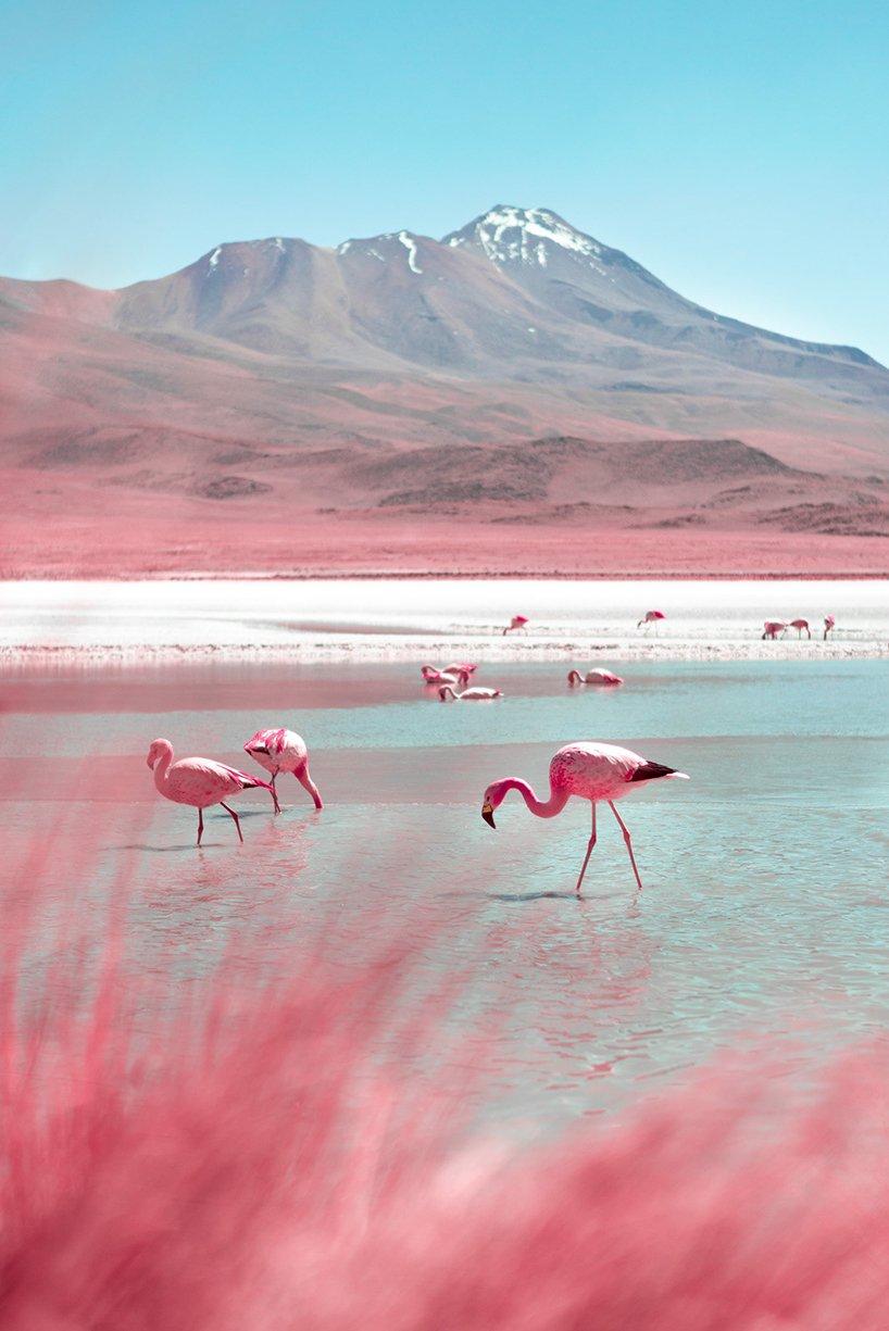 bolivia-infraland-paolo-pettigiani-1