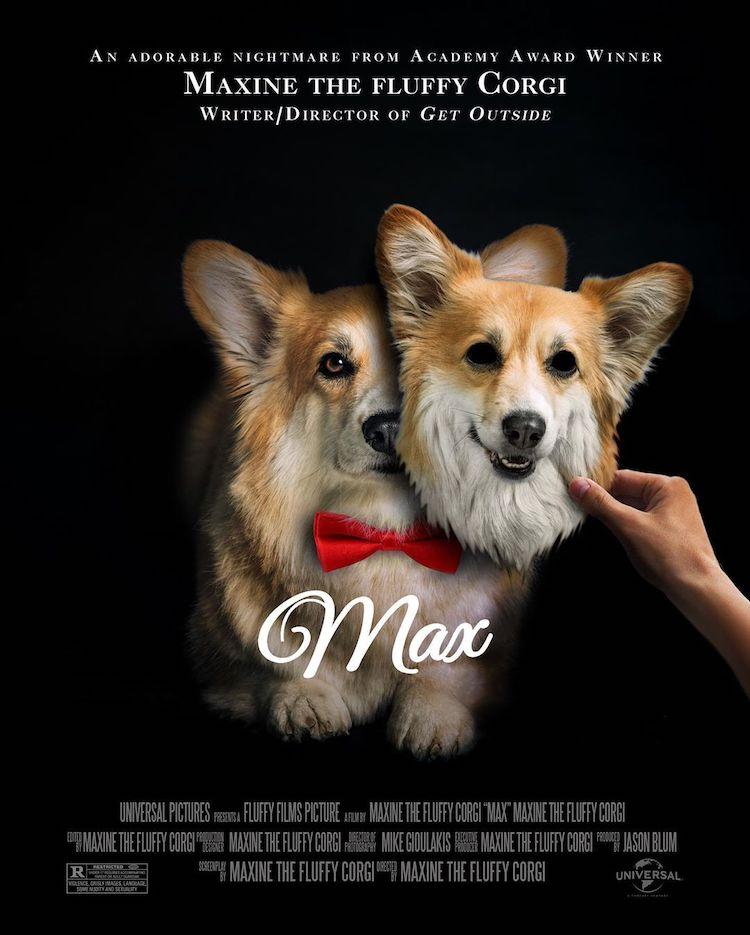 maxine-the-corgi-film-poster-recreations-6